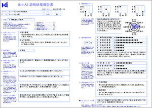 HCi-ASの報告書画像
